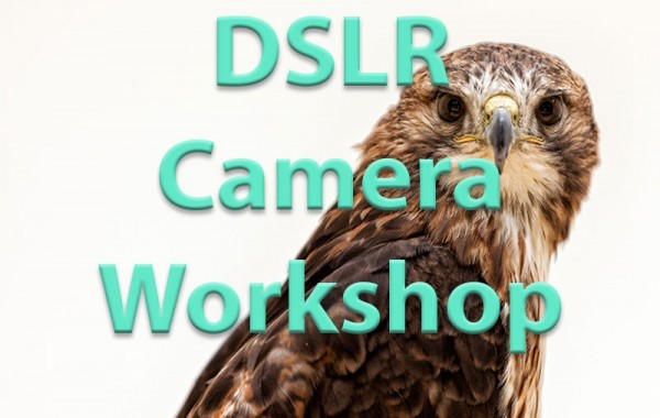 DSLR Camera Workshop