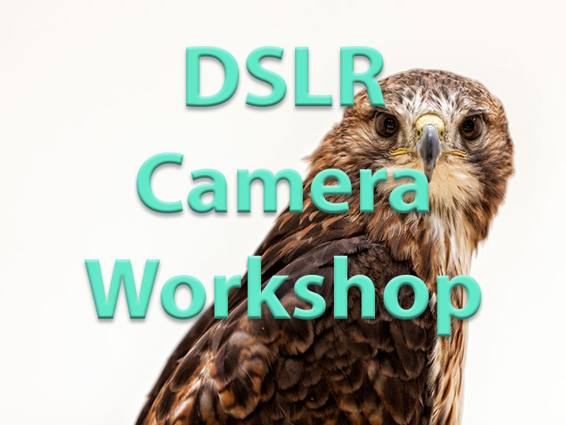 DSLR-Camera-Workshop