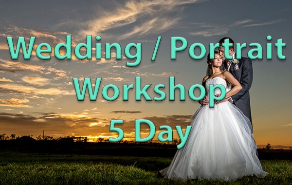 Wedding & Portrait Photography