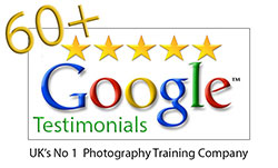 5-Star-google-review-(Web)