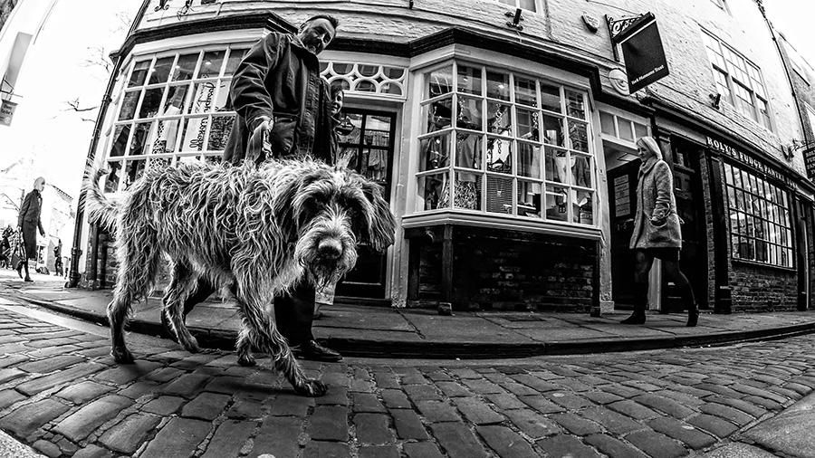 Street-Photography-York-0010