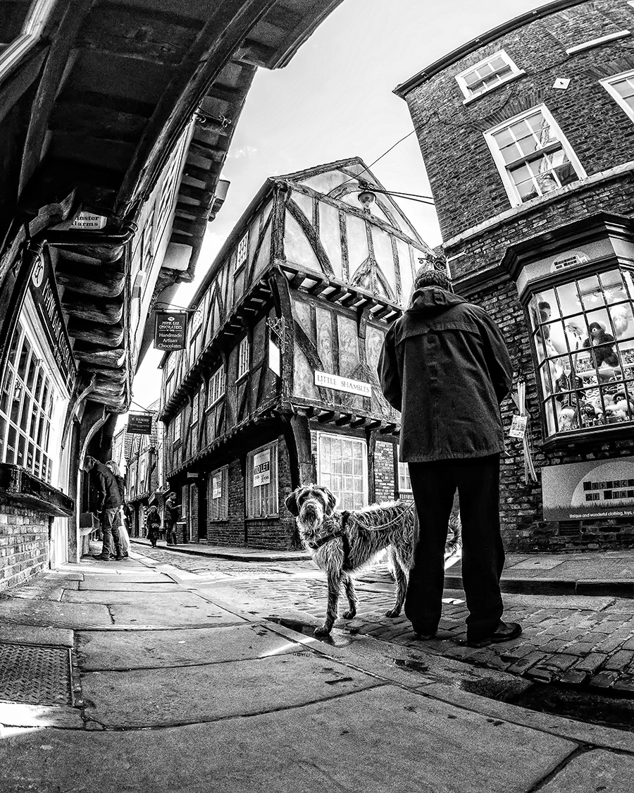 Street-Photography-York-0011