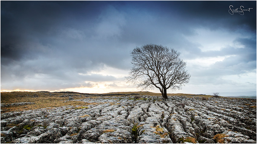 Landscape Photography using Budget Gear - The Loan Tree yorkshire