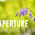 a complete guide APERTURE